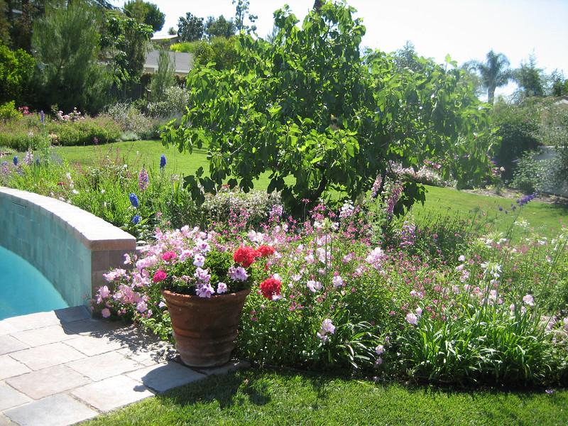 Cottage Garden Landscape Design In Orange County ...
