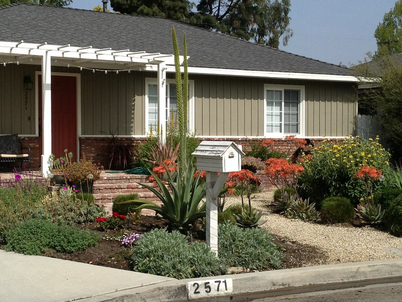 Drought resistant native landscape design photos for Drought tolerant front garden designs