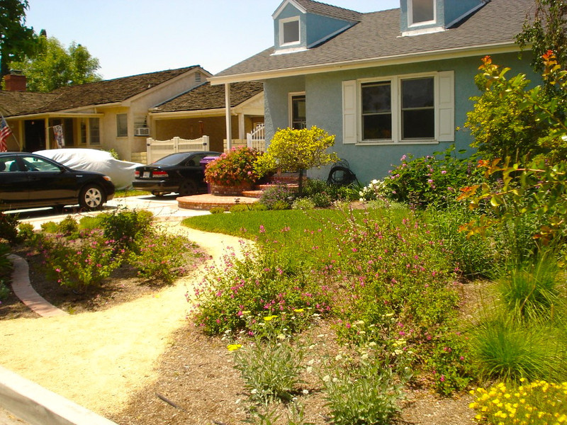 Drought Resistant Landscaping Ideas Easy Landscaping