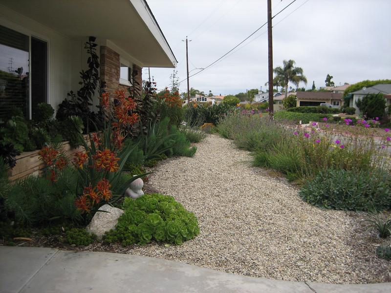 Drought Tolerant Landscape Design After 800 600