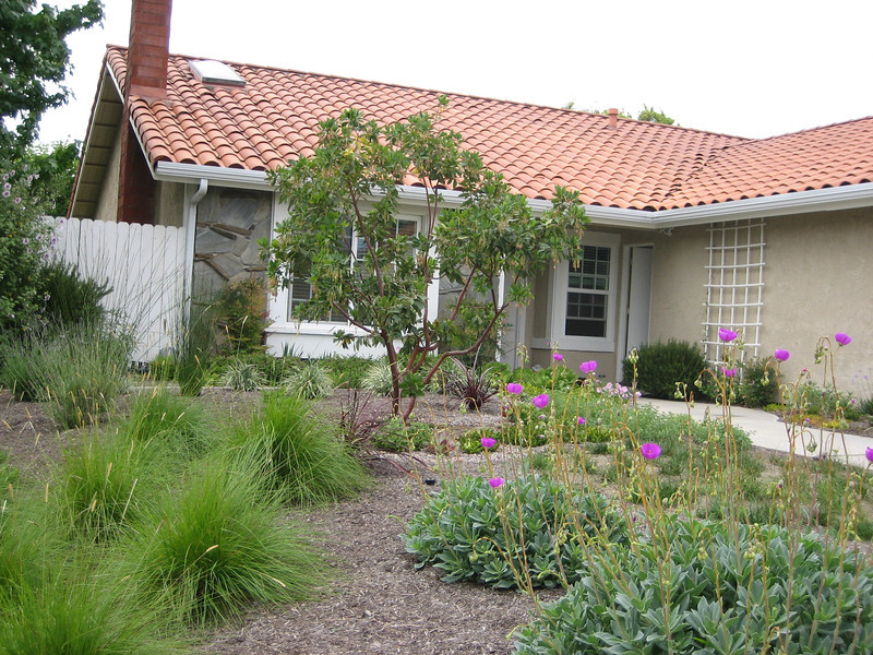 Drought Tolerant Landscape Design Photo Gallery