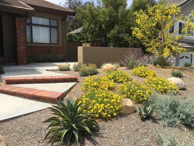 Mediteranean Landscaper in Orange County