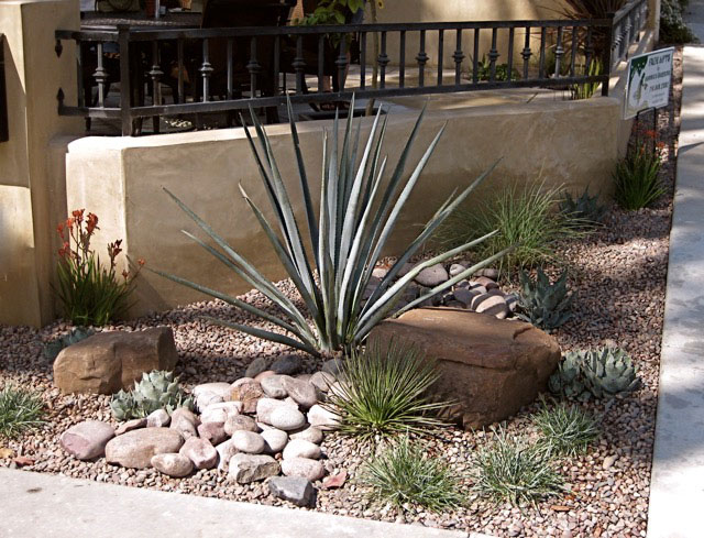 Photos of Drought Resistant Native Landscape Design