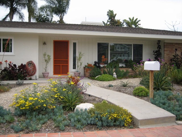 Drought Tolerant Contractor in Orange County
