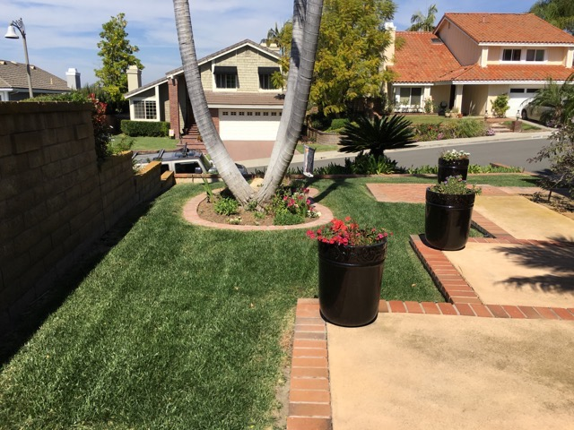 Drought Tolerant Backyard Designs a back yard sustainable landscape Drought Tolerant Landscape Design Contractor In Orange County