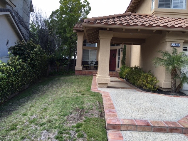 Drought Tolerant Backyard Designs drought tolerant garden designs best backyard landscaping ideas natural rye grass green trees shrubs flowers plantation Drought Tolerant Landscape Design Contractor In Orange County