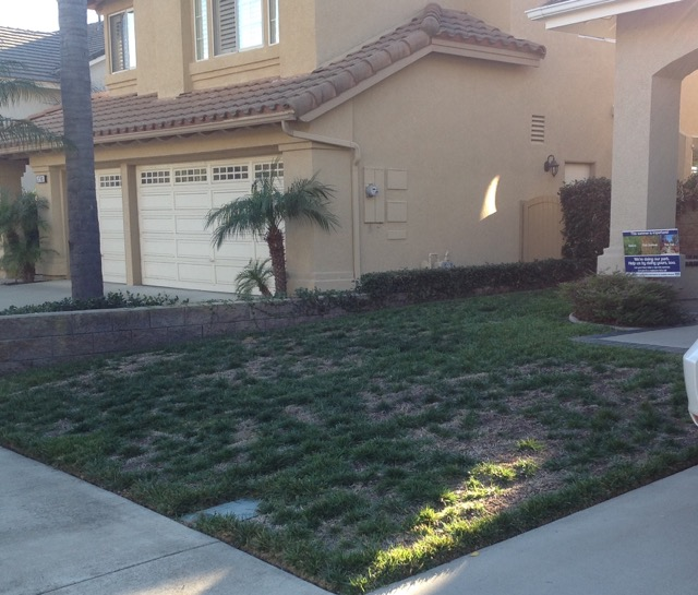 Drought Tolerant Landscape Design Contractor in Orange County