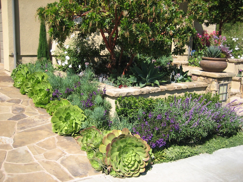 Landscape Design In Orange County Photo Gallery