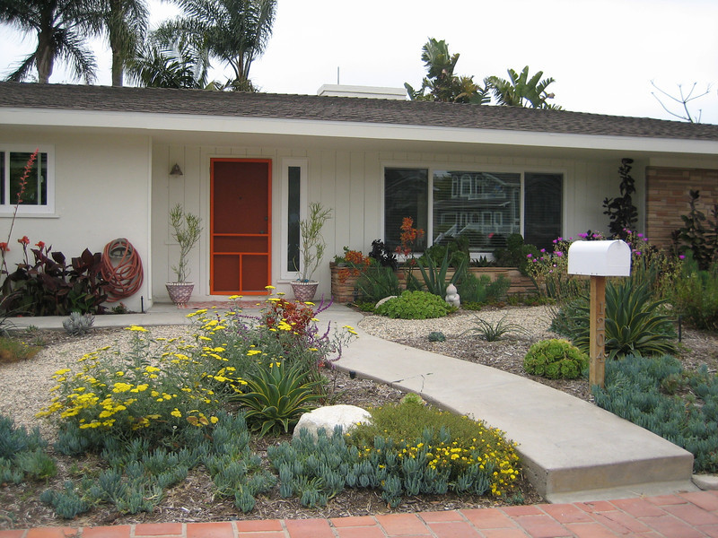 Landscape design in orange county photo gallery for Drought tolerant yard