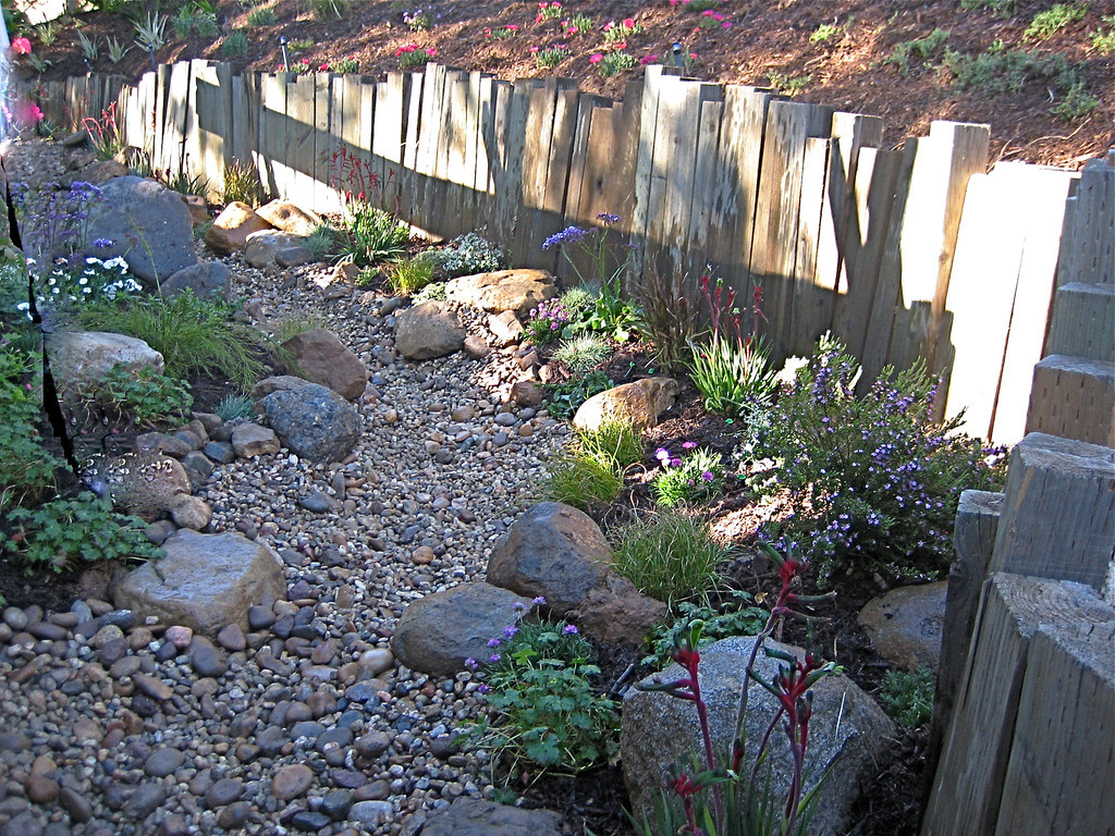 Best Landscape Ideas: Drought tolerant landscaping orange county